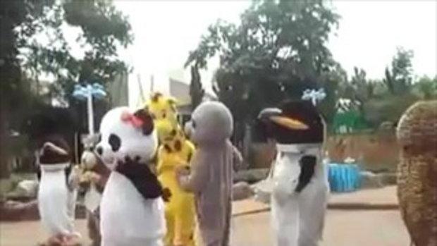 หมีแพนด้า จ้างมา 500 เต้น 5,000