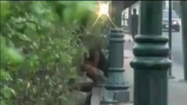 http://video.sanook.com/player/493539/