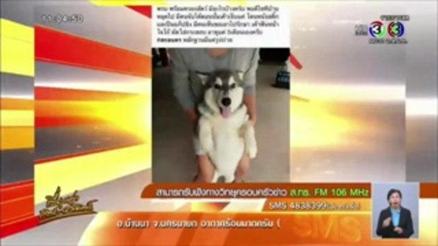 ผญบ.เมืองสกลฯ ปัดกินสุนัขไซบีเรียน หลังโลกออนไลน์แชร์กระหึ่ม (12ก.ค.58)