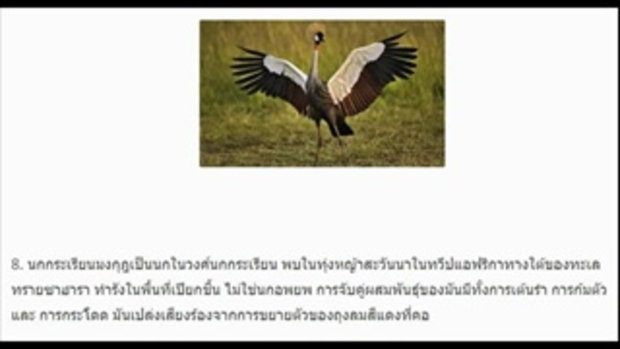 10 นก สวยที่สุดในโลก