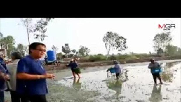 ฝนมา น้ำเจิ่ง ภัยแล้งทุเลา ชาวนาพิจิตรเริ่มปลูกข้าวแล้ว