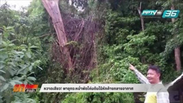 หวาดเสียว! พายุกระหน่ำพัดโค่นต้นไม้หักค้างกลางอากาศ