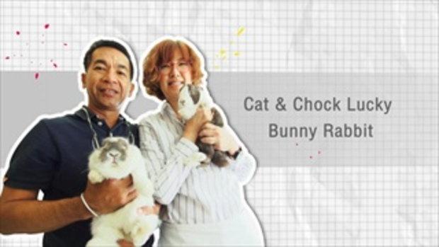 กระบี่มือหนึ่ง : Bunny Rabbit (18 ม.ค.59)
