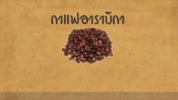 กบนอกกะลา : โรบัสต้า หอมกรุ่นจากฟาร์ม สู่แก้วกาแฟของคุณ ช่วงที่ 1/4 (20 ก.พ.58)