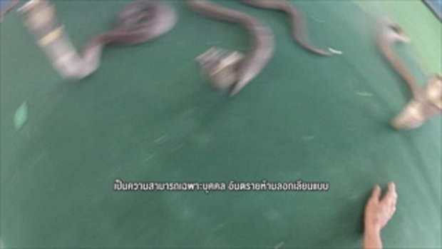 รวมฮิต กระบี่มือหนึ่ง : คนมหัศจรรย์ AVENGER เมืองไทย | X-MEN สมบัติมนุษย์งู