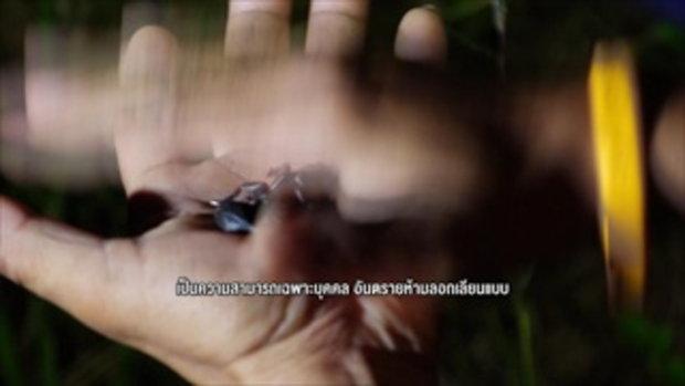 รวมฮิต กระบี่มือหนึ่ง : คนมหัศจรรย์ AVENGER เมืองไทย | X-MEN มนุษย์แมงป่อง