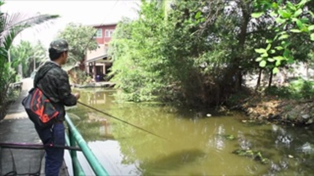 รวมฮิต กระบี่มือหนึ่ง : สุดยอดคนพันธุ์ X | Street fishing