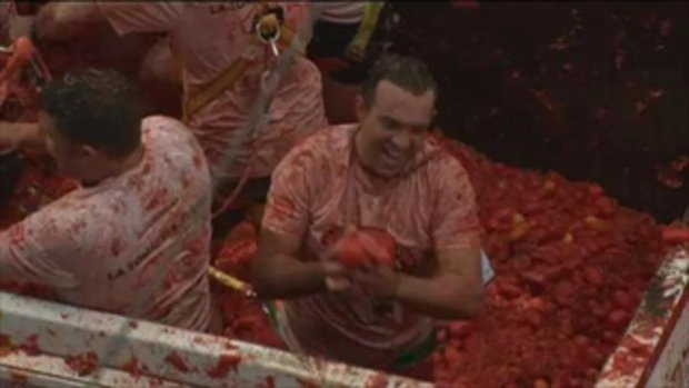 เทศกาลปามะเขือเทศ (La Tomatina) 2016