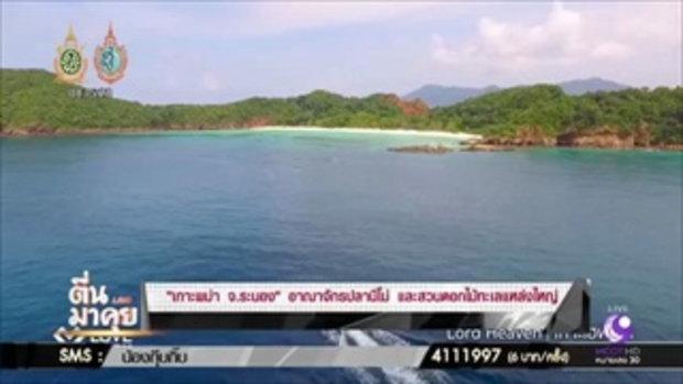 """ตื่นมาคุย- """"เกาะพม่า จ.ระนอง"""" อาณาจักรปลานีโม่ เเละสวนดอกไม้ทะเลแหล่งใหญ่!!"""