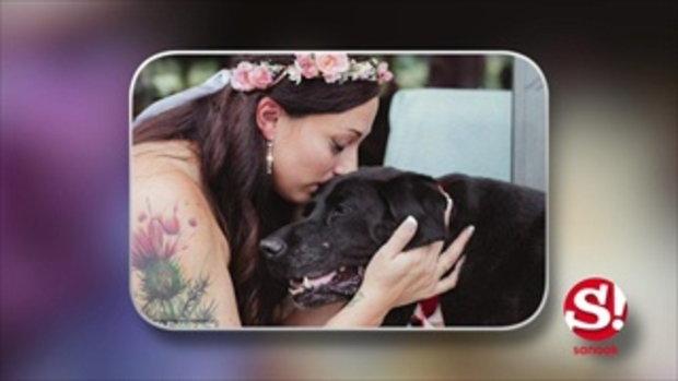 ภาพซึ้ง! สุนัขป่วยใกล้ตายเป็นเพื่อนเจ้าสาวในพิธีแต่งงาน