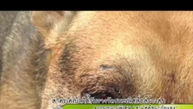 Sakorn News : ชาวบ้านหอบหมาร้องสื่อ