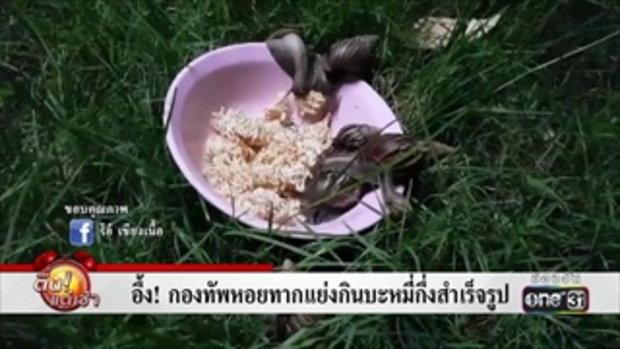 อึ้ง! กองทัพหอยทากแย่งกินบะหมี่กึ่งสำเร็จรูป | ข่าวช่องวัน | one31