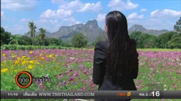 เที่ยวชมทุ่งดอกคอสมอสแห่งแรกท่ามกลางหุบเขาจีนแล ใน จ.ลพบุรี