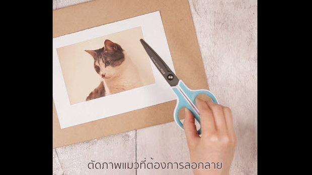แมวขวดโหล (Transfer picture on cat food container)