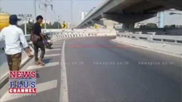 2คนไทยน้ำใจงามจอดรถช่วยแมวท้องแก่บนสะพานหวั่นถูกรถทับตาย