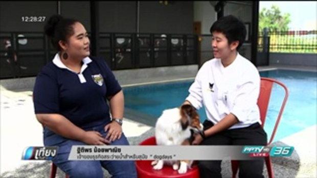 ประตูสู่เศรษฐี - สระว่ายน้ำสำหรับสุนัข dogdays - เที่ยงทันข่าว