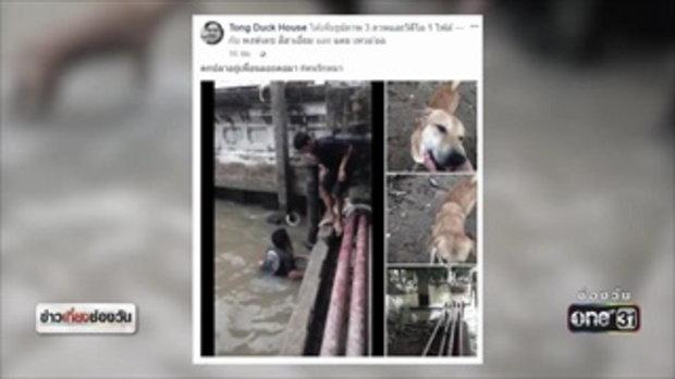 แห่ชื่นชม เด็กหนุ่มใจดีช่วยสุนัขตกน้ำ | ข่าวช่องวัน | ช่อง one31