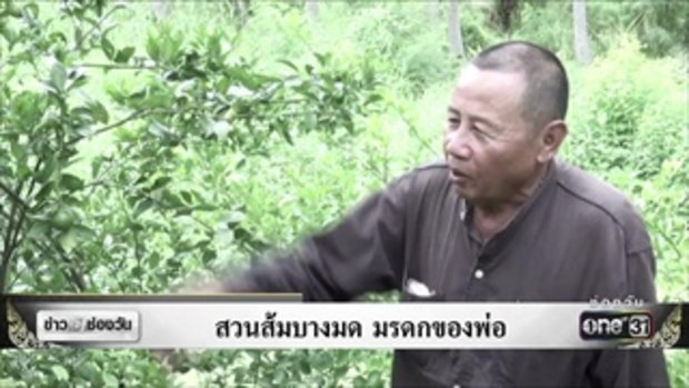 สวนส้มบางมด มรดกของพ่อ | ข่าวช่องวัน | ช่อง one31