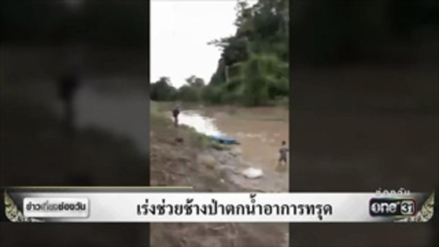 เร่งช่วยช้างป่าตกน้ำอาการทรุด | ข่าวช่องวัน | ช่อง one31