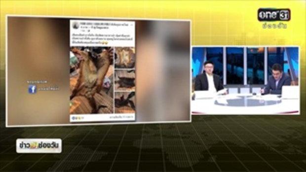 พรานโชว์ล่าสัตว์ป่าคุ้มครอง ในทุ่งใหญ่นเรศวรฯ | ข่าวช่องวัน | ช่อง one31