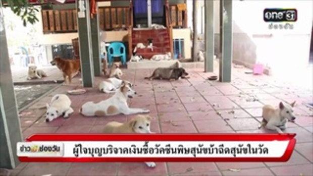 ชาวบ้านผวาพิษสุนัขบ้าหลังควายล้มตาย | ข่าวช่องวัน | ช่อง one31