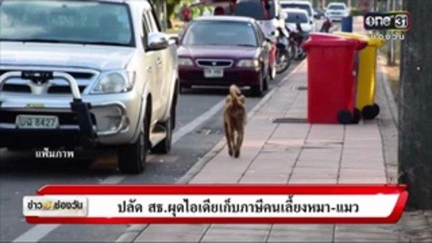 ปลัด สธ.ผุดไอเดียเก็บภาษีคนเลี้ยงหมา-แมว | ข่าวช่องวัน | ช่อง one31