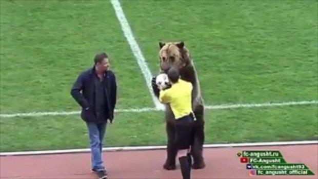เผยคลิปลีกล่างแดนหมีขาวใช้ หมี ตัวเป็นๆ มามอบลูกบอลให้กรรมการ