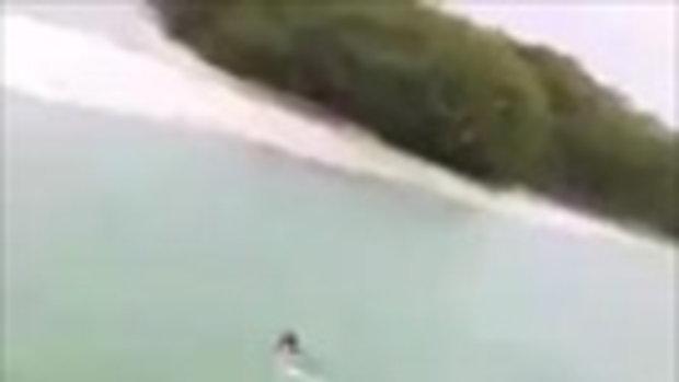วินาทีชีวิต! นักท่องเที่ยวว่ายน้ำเล่น จู่ๆ จระเข้โผล่ใกล้ๆ ว่ายหนีตายสุดชีวิต
