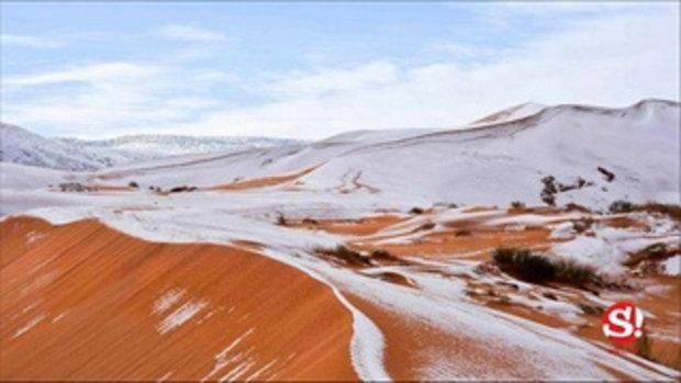 หิมะตกในทะเลทรายซาฮารา ครั้งที่ 3 ในรอบ 40 ปี