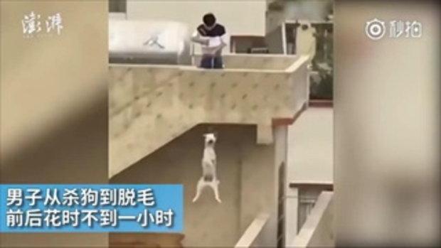 หนุ่มจิตป่วยขั้นหนัก จับสุนัขแขวนคอจากดาดฟ้าจนตาย มีคนห้ามยังหัวเราะใส่