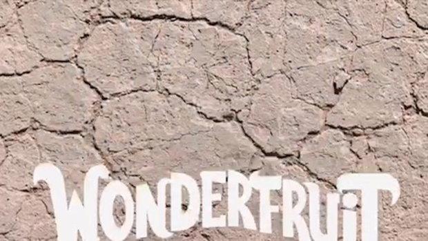 Wonderfruit 2018 เทศกาลแห่งดนตรี ศิลปะ และไอเดียสร้างสรรค์