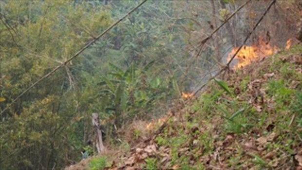 เร่งคุมไฟป่าสะเมิง เจ้าหน้าที่ระดมกำลังนับร้อยนาย ขณะชาวบ้านผวาลามเข้าบ้าน