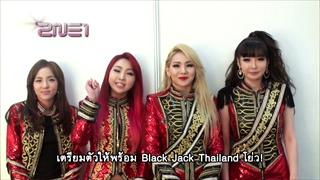 2NE1 Tofu Music Festival 2014