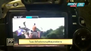 PP E News - ใบเตย เปิดใจหลังประสบอุบัติเหตุ ตกหลังควาย