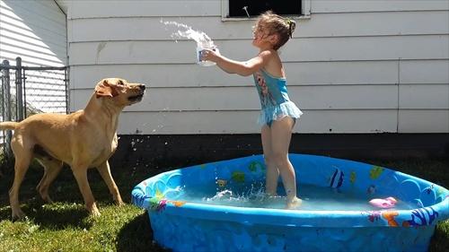 ถึงเวลาสนุกกับการเล่นน้ำ