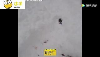 หนุ่มเล่นสโนว์บอร์ดเกิดถูกฝังใต้หิมะทั้งตัว เคราะห์ดีเพื่อนขุดช่วยทัน