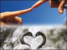9 กลยุทธ์สร้าง ความรัก ฉบับกระเป๋า