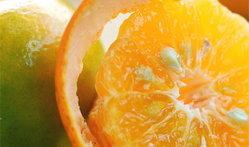 น้ำมันหอมระเหยส้ม ดีกับผิว ดีกับอารมณ์