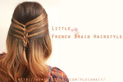 Little French Braid Hairstyle