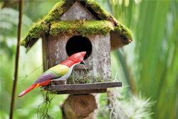make over สวนสวยให้บ้านคุณดูสะดุดตา