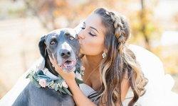 ทิปส์ดีๆ สำหรับ งานแต่งงาน สไตล์ Pet-Friendly
