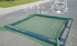 เชื่อหรือไม่? คนญี่ปุ่นให้ความสำคัญกับกระบะทรายเด็กเล่นมากกว่าที่คิด