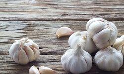 6 อาหารบำรุงสุขภาพ สร้างภูมิคุ้มกันร่างกายให้แข็งแรง ห่างไกลจากโรค