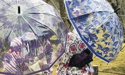 สวยหรูดูดี! ร่มพลาสติกที่ได้รับแรงบันดาลใจจากร่มญี่ปุ่น