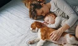 มีลูกน้อยในบ้าน เลี้ยงสัตว์ได้ไหม? เลี้ยงอย่างไรไม่ให้อันตรายต่อเด็กเล็ก