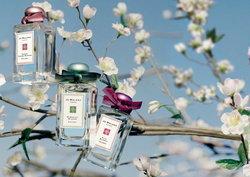 Jo Malone : Blue Skies & Blossoms 3 กลิ่นหอมของดอกไม้แรกแย้มรับฤดูใบไม้ผลิ