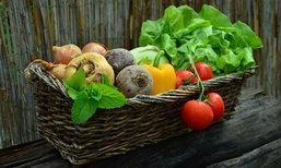 ผักเพื่อสุขภาพ ไฟเบอร์สูง สุดยอดอาหารลดน้ำหนักที่ไม่ควรพลาด !