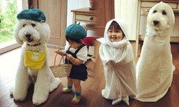 ดูแล้วยิ้มตาม! ความน่ารักของสาวน้อยชาวญี่ปุ่น กับคู่หูเจ้าหมาพุดเดิ้ลยักษ์