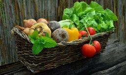 5 วิธีล้างผักผลไม้ให้สะอาด ปลอดภัยจากสารพิษตกค้างมากที่สุด