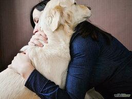 กอดสุนัข ช่วยนักศึกษาคลายเครียด